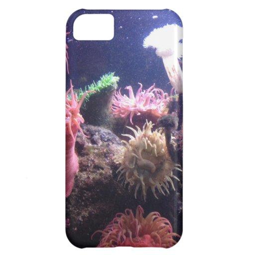 Caso de Iphone 5 del acuario 1