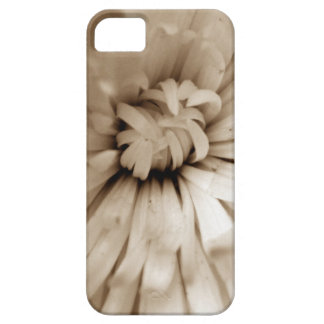 Caso de Iphone 5 iPhone 5 Case-Mate Protectores