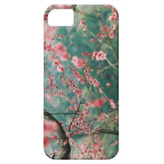 Caso de IPhone 5s de la flor de cerezo iPhone 5 Fundas