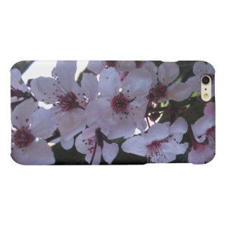 Caso de Iphone 6 del flor del ciruelo