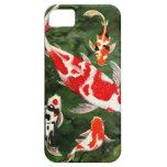 Caso de Iphone con los pescados iPhone 5 Case-Mate Protector