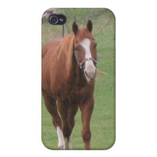 Caso de Iphone de la belleza del caballo iPhone 4 Funda