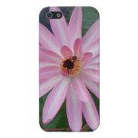Caso de IPhone de la flor de Lilly del agua iPhone 5 Carcasas