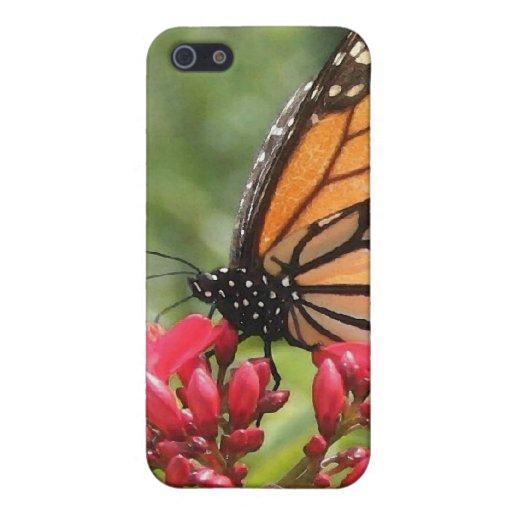 Caso de Iphone de la mariposa de monarca iPhone 5 Carcasa
