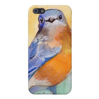 Caso de Iphone del Bluebird iPhone 5 Protector