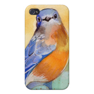 Caso de Iphone del Bluebird iPhone 4 Protectores