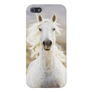 Caso de IPhone del caballo salvaje de la llamada d iPhone 5 Fundas