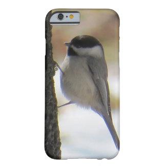 Caso de IPhone del Chickadee de Carolina Funda Para iPhone 6 Barely There