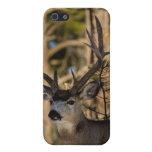 Caso de Iphone del ciervo mula iPhone 5 Fundas