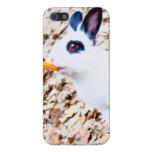 Caso de Iphone del conejo iPhone 5 Cárcasas
