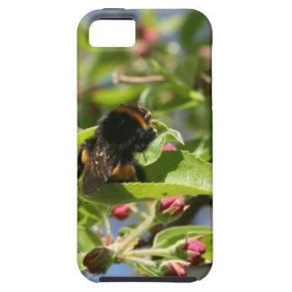 Caso de Iphone del vago de la abeja Funda Para iPhone SE/5/5s
