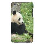 Caso de iTouch de la panda Case-Mate iPod Touch Cobertura