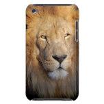 Caso de iTouch de las imágenes del león iPod Case-Mate Cárcasas