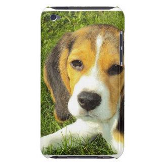 Caso de iTouch del beagle Barely There iPod Protectores