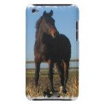 Caso de iTouch del caballo de bahía iPod Case-Mate Coberturas