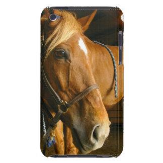 Caso de iTouch del diseño del caballo de la castañ iPod Touch Case-Mate Protector