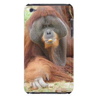 Caso de iTouch del mono del orangután del Pongo iPod Case-Mate Cárcasas