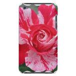Caso de iTouch del rosa rojo y blanco Barely There iPod Protector