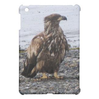 Caso de Kenai Alaska Eagle de oro Ipad