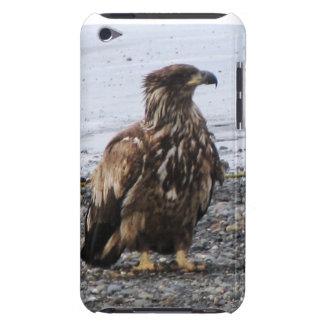 Caso de Kenai Alaska Eagle de oro IPod Barely Ther iPod Case-Mate Coberturas