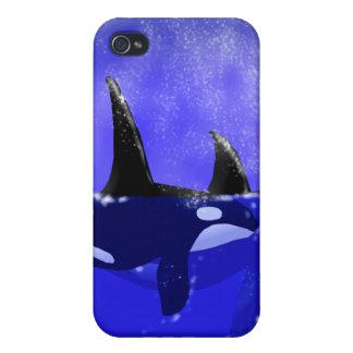 Caso de la ballena iPhone/iPad de la orca iPhone 4 Cárcasas