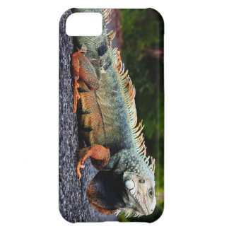 Caso de la célula de la iguana de la roca funda para iPhone 5C