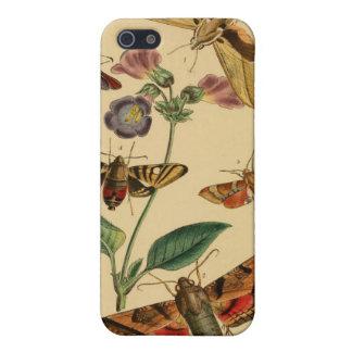 Caso de la entomología de las polillas del vintage iPhone 5 carcasas