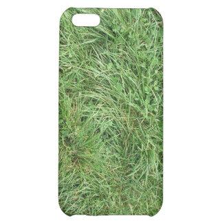 Caso de la hierba verde
