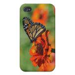 Caso de la mariposa iPhone4 iPhone 4 Coberturas