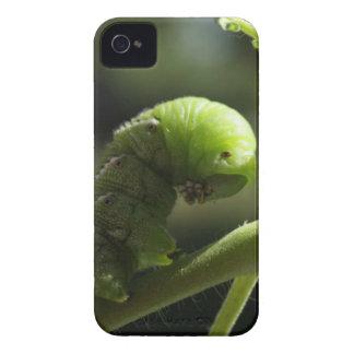 Caso de la naturaleza iPhone 4 cárcasas