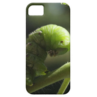 Caso de la naturaleza iPhone 5 carcasa