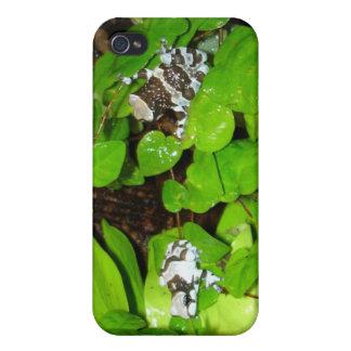 Caso de la rana iPhone4 de la leche del Amazonas iPhone 4 Carcasas