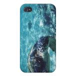 Caso de la tortuga de mar de Iphone iPhone 4 Cárcasas