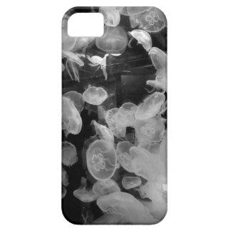 Caso de las medusas iPhone 5 carcasa