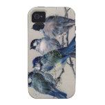 Caso de los Bluebirds de París del vintage iPhone 4/4S Fundas