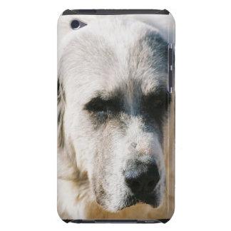 Caso de los grandes Pirineos iTouch Case-Mate iPod Touch Carcasas