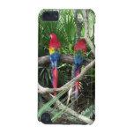 Caso de los Macaws del escarlata para el tacto 5G