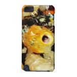 Caso de los pescados de Koi (3) iPod