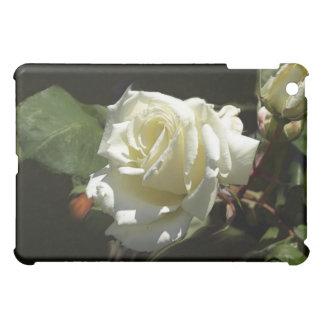 Caso de los rosas blancos
