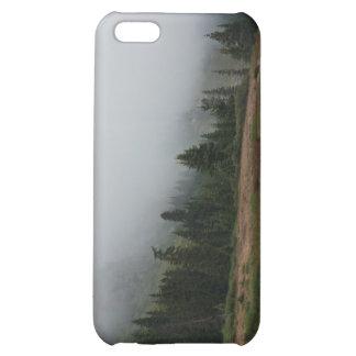 Caso de niebla del iPhone 5c de la escena de la mo