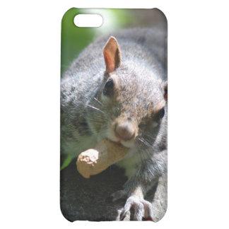 Caso de nuez del iPhone 4 de la ardilla