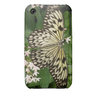 Caso de papel del iPhone de la mariposa de la come iPhone 3 Funda
