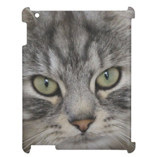 Caso de plata del iPad de la cara del gato persa