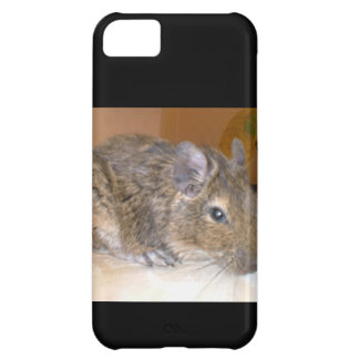 Caso de relajación del iPhone 5 de Degu