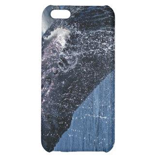 Caso de salto del iPhone 4 de la ballena jorobada