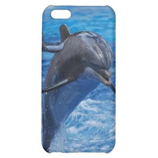 Caso de salto del iPhone 4 del delfín