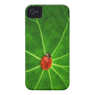 Caso de señora Bug Iphone 4S Case-Mate iPhone 4 Cárcasa