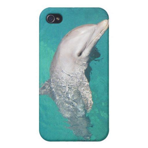 Caso de Shell duro del delfín para el iPhone 4 iPhone 4/4S Carcasa