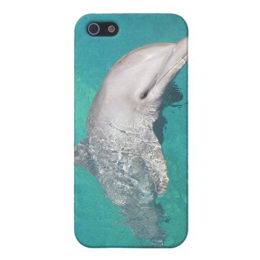 Caso de Shell duro del delfín para el iPhone 4 iPhone 5 Fundas