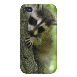 Caso del bebé del mapache iPhone 4 coberturas